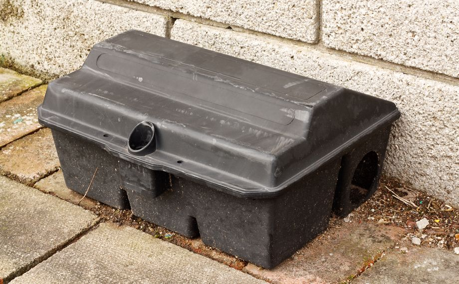Enclosed Rat trap safety poison